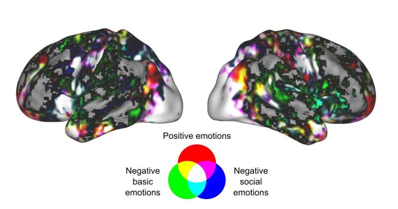 Love and fear are visible across the brain instead of being restricted to any brain region