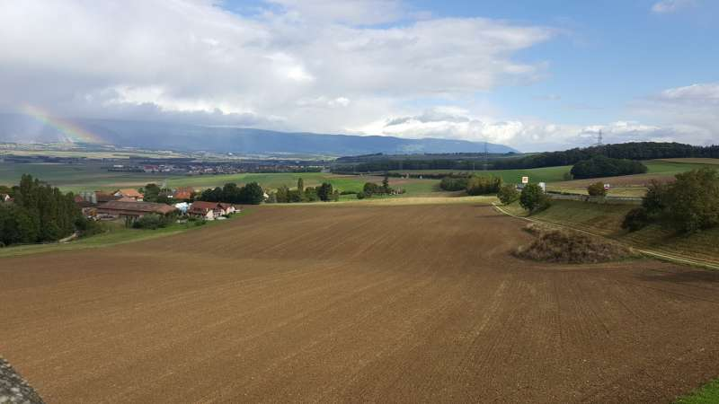 Maintaining valuable soils