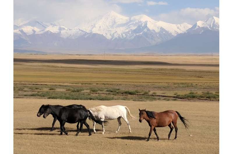 Major corridor of Silk Road already home to high-mountain herders over 4,000 years ago