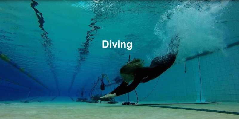 Marine animals can hear us swim, kayak and scuba dive