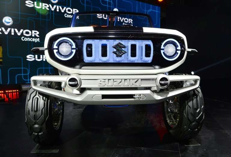 Maruti Suzuki, India's biggest maker of passenger vehicles, aims to launch an electric car in the country in 2020
