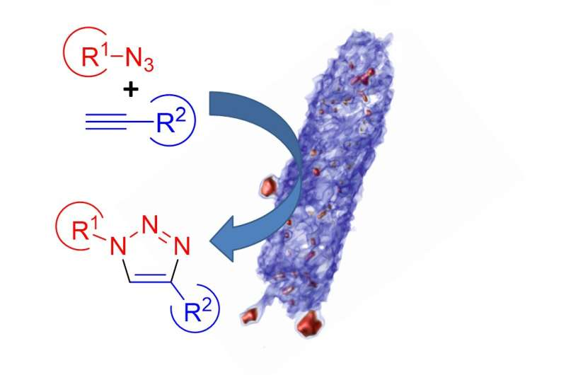 Metal-reducing bacteria offer a greener route for producing copper catalysts