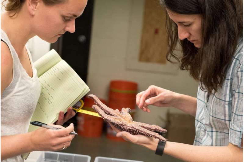 Microbiome implicated in sea star wasting disease