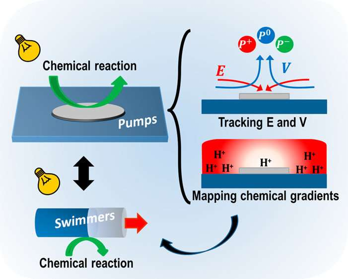 Micropumps as a platform for understanding chemically propelled micromotors