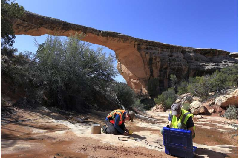 Monitoring the tremble -- and potential fall -- of natural rock arches
