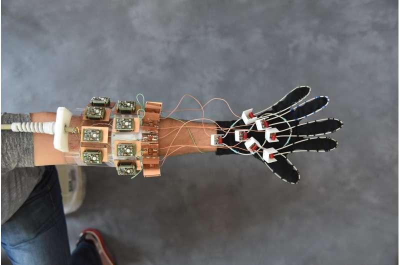 MRI 'glove' provides new look at hand anatomy