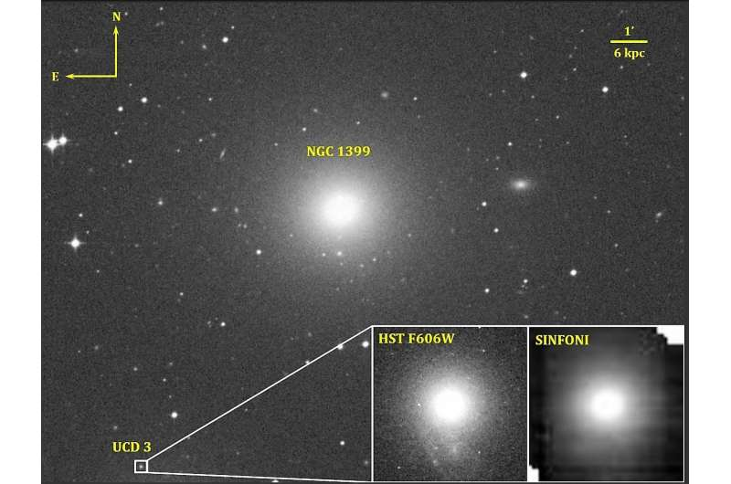 MSU Astronomers discovered supermassive black hole in an ultracompact dwarf galaxy