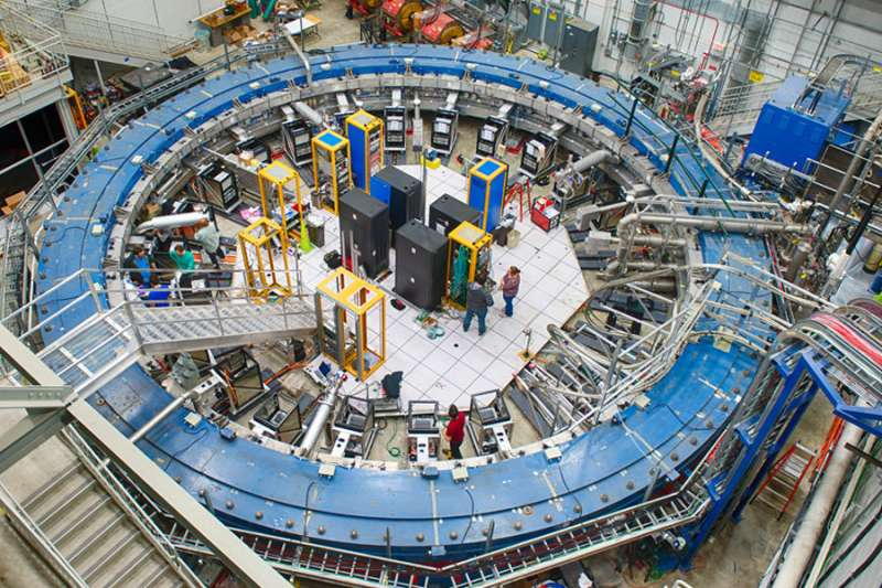 Muons spin tales of undiscovered particles