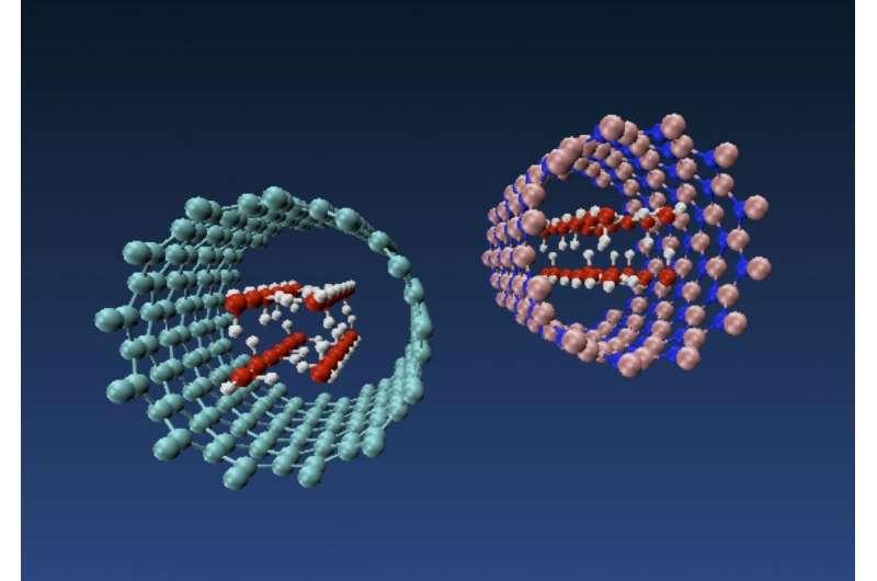 Nanotubes change the shape of water