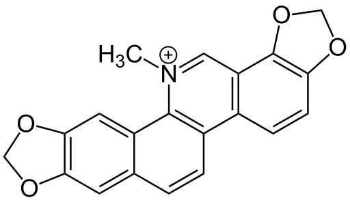 Natural nanotech anticancer drug