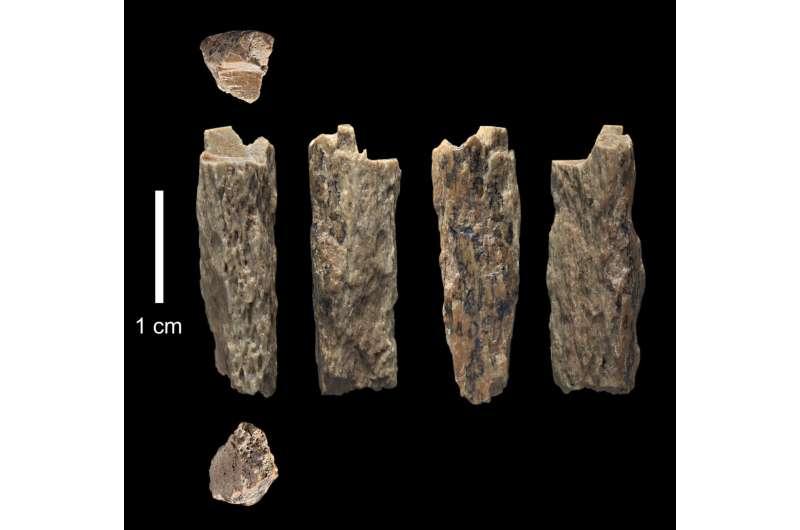 Neandertal mother, Denisovan father!