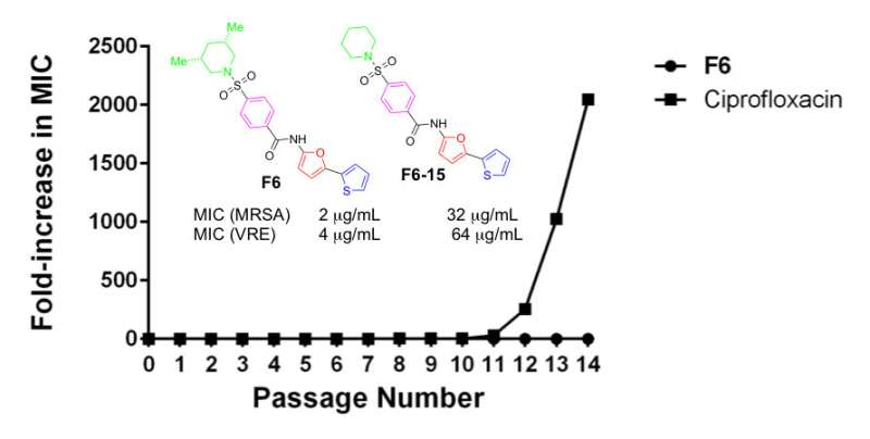 New compound shown to be as effective as FDA-approved drugs against life-threatening infections