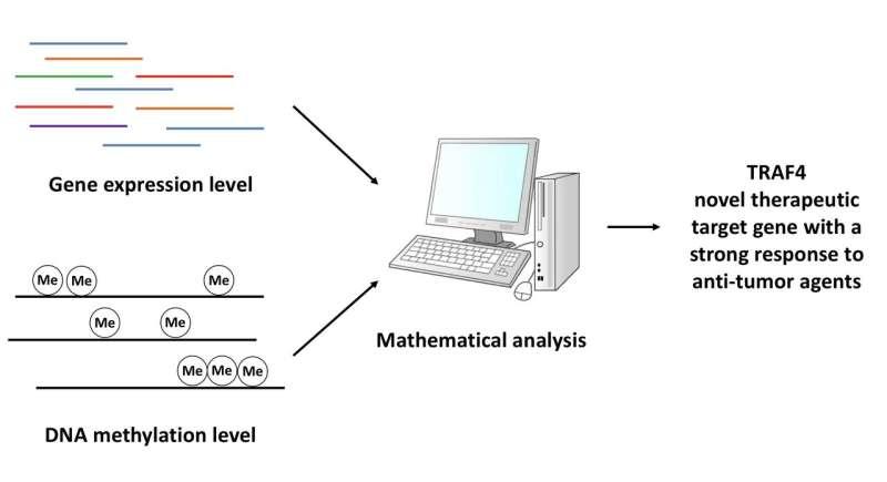New computational method reveals chemoresistance drug targets