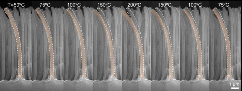 New concept to cool boiling surface may help prevent nuclear power plant accidents