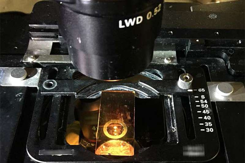 Newly improved glass slide turns microscopes into thermometers
