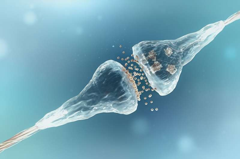New sensor discovery has implications for brain research