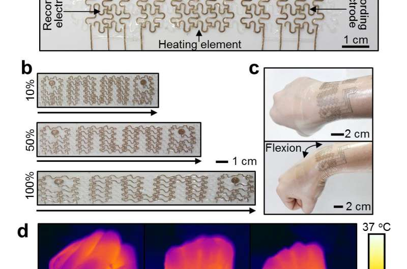 New soft bioelectronic mesh tested on human wrist and pulsating pig's heart