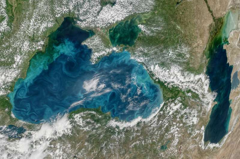 New study in oxygen-deprived black sea provides insights on future carbon budget
