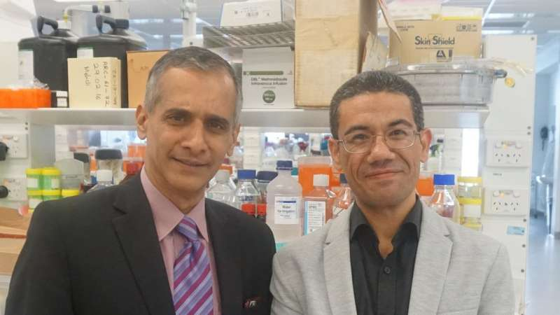 New tool to detect fatty liver disease before liver damage