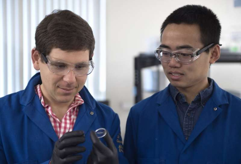 Now you see it: Invisibility material created