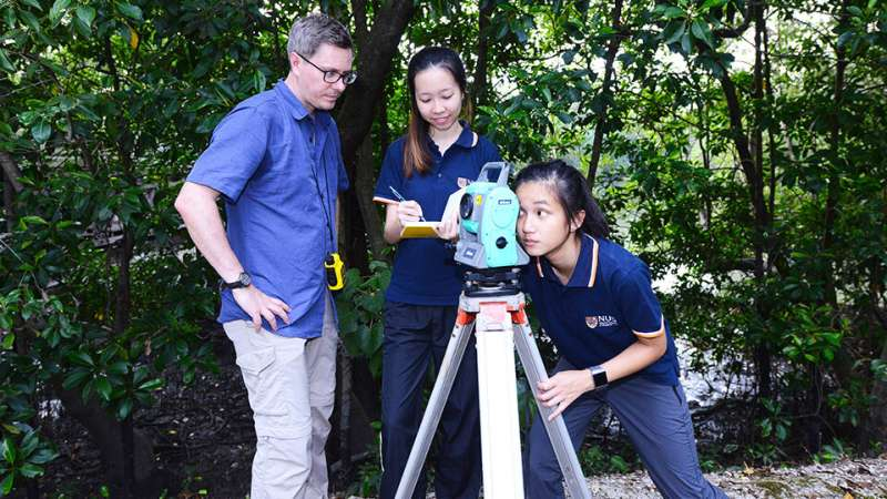 NUS geography researchers determine benefits of Singapore's mangroves