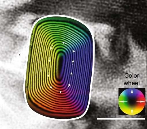 oldest magnetic field