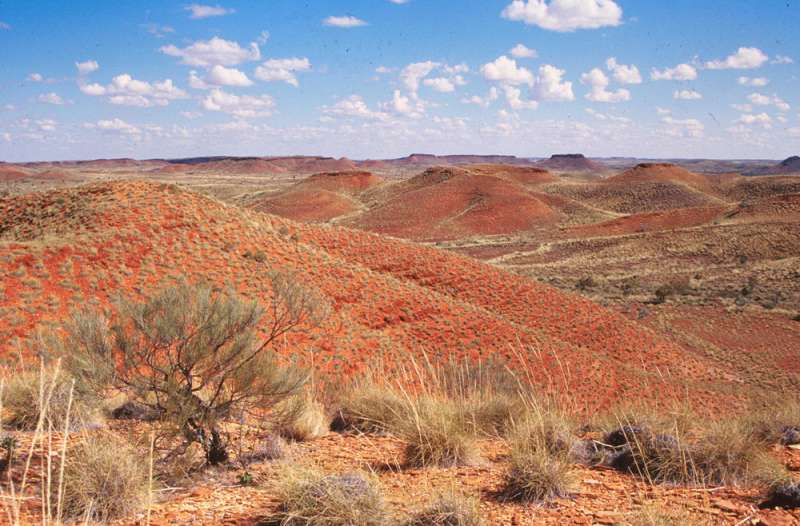 Oxygen levels on early Earth rose, fell several times before great oxidation even