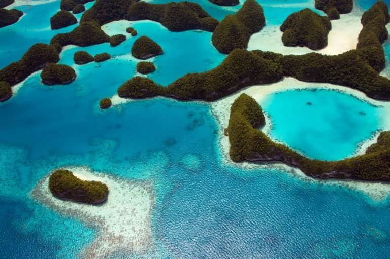 Palau is to introduce the world's first ban on sunscreen chemicals to protect its famed corals