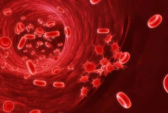 Patients could be spared life-long leukaemia treatment, clinical trial finds