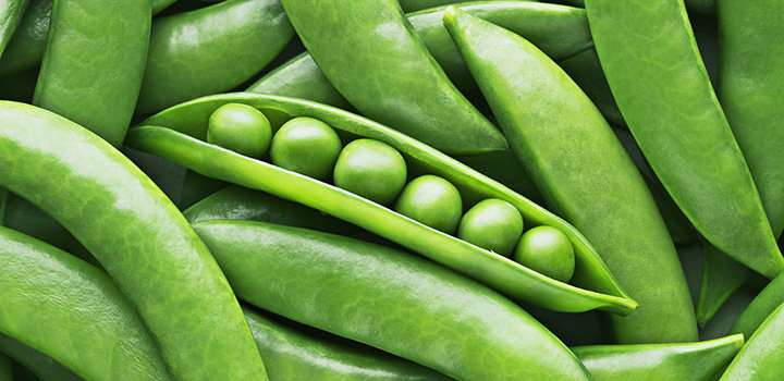 Peas could provide cheap and effective iron supplement