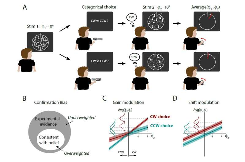 People show confirmation bias even about which way dots are moving