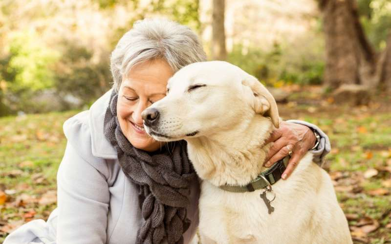 Pets help their retired owners fall asleep more easily and feel better about their neighbourhood, study shows