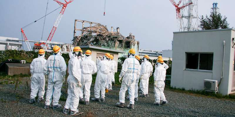 Phasing out nuclear energy could affect safety