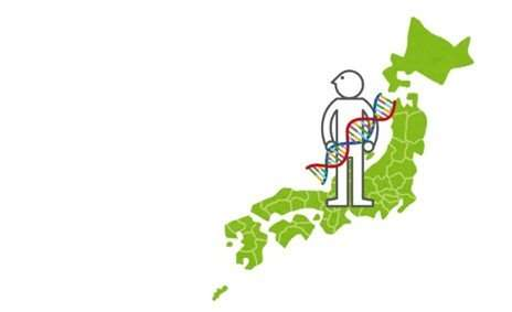 Polishing Japanese genome data with distant relatives