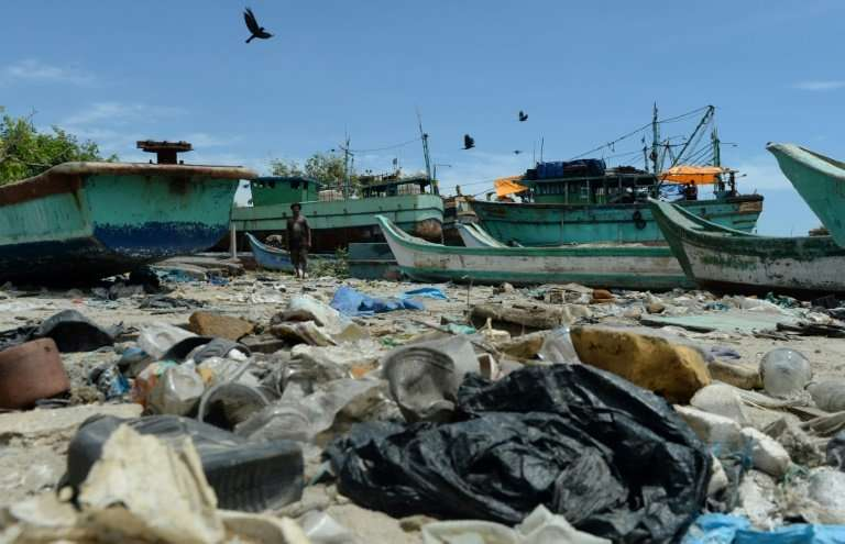 Pollution poses a serious threat to marine life, with plastic bags a particular danger for marine mammals like whales and dolphi