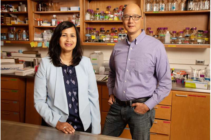 Products of omega-3 fatty acid metabolism may have anticancer effects, study shows