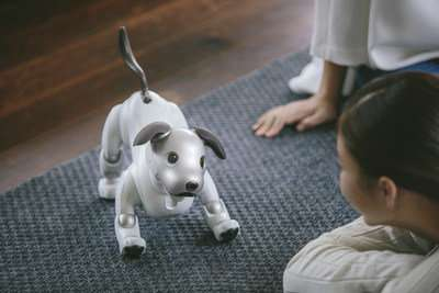 Puppy love is not cheap with Aibo but robot parts, tech will make you look twice (at least)