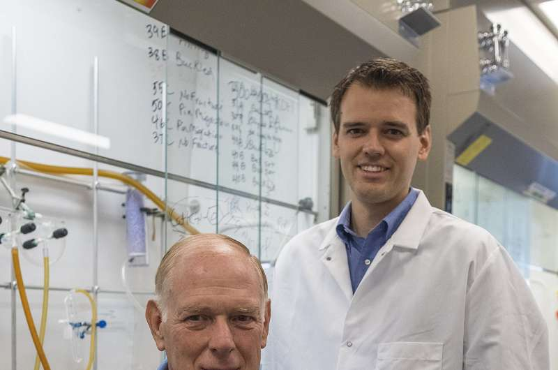 Purdue injected drug combination could expedite bone fracture healing