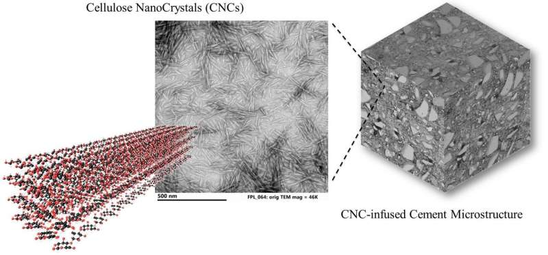 Purdue researchers show microscopic wood nanocrystals make concrete stronger