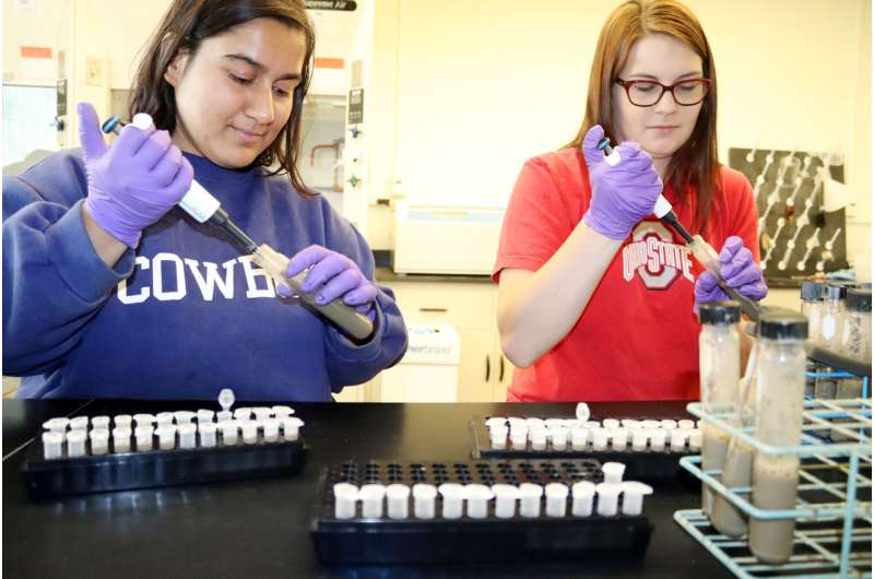 Quick soil test aims to determine nitrogen need