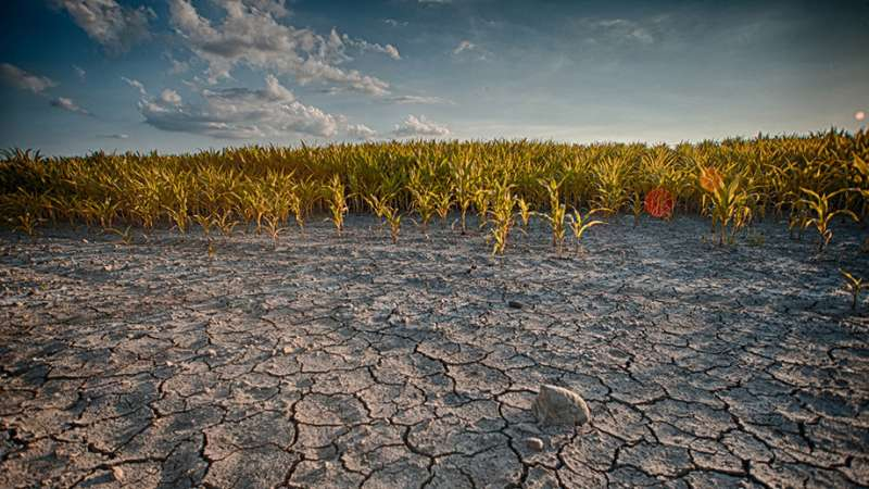 Rainfall's natural variation hides climate change signal