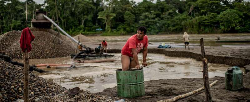 Rainforest destruction from gold mining hits all-time high in Peru