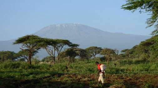 Rapid land changes forecast for East African savannahs
