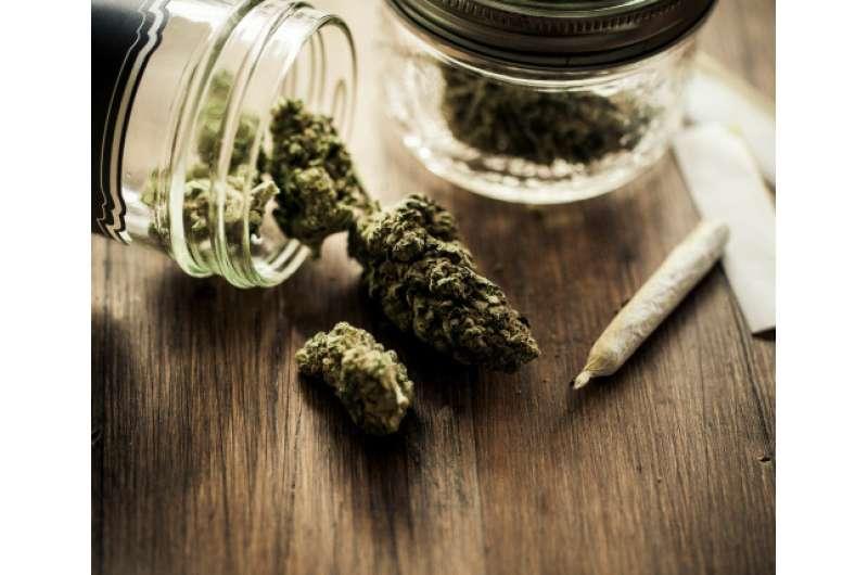 Recent study in Oregon reveals public considers alcohol more harmful than marijuana