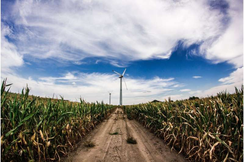 renewable crops