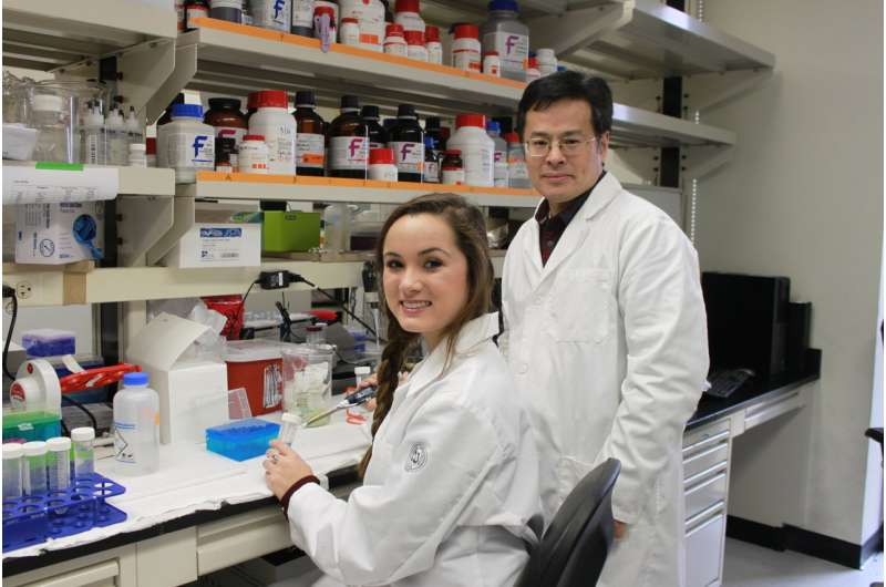 Researchers zero in on potential therapeutic target for diabetes, associated diseases