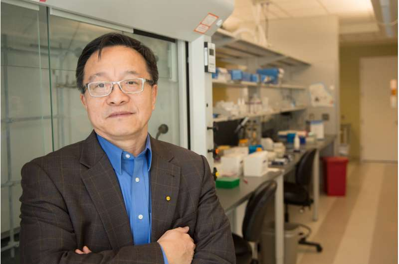 Rice U. reports progress in pursuit of sickle cell cure