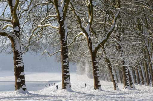 Romanian study: Half-day old snow is safe to eat