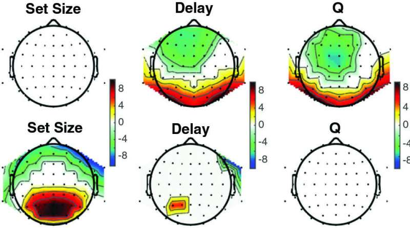 Separate brain systems cooperate during learning, study finds