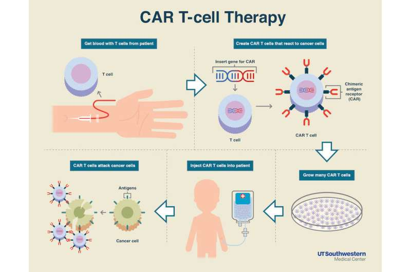 Simmons Cancer Center researchers part of historic CAR-T breakthrough